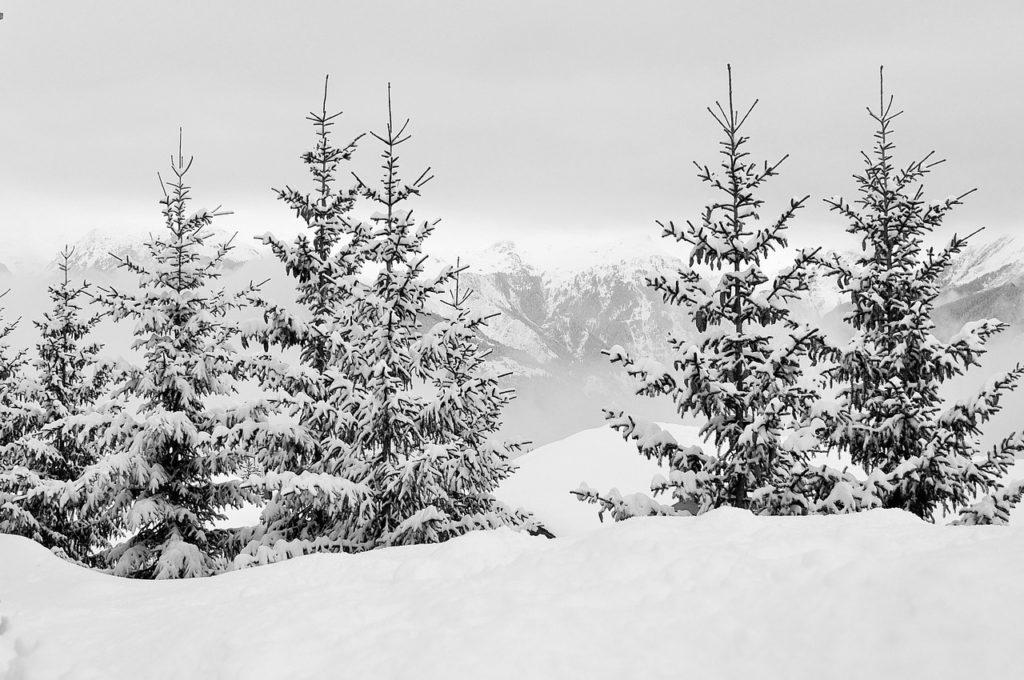 Faire du ski à Savoie Grand Revard